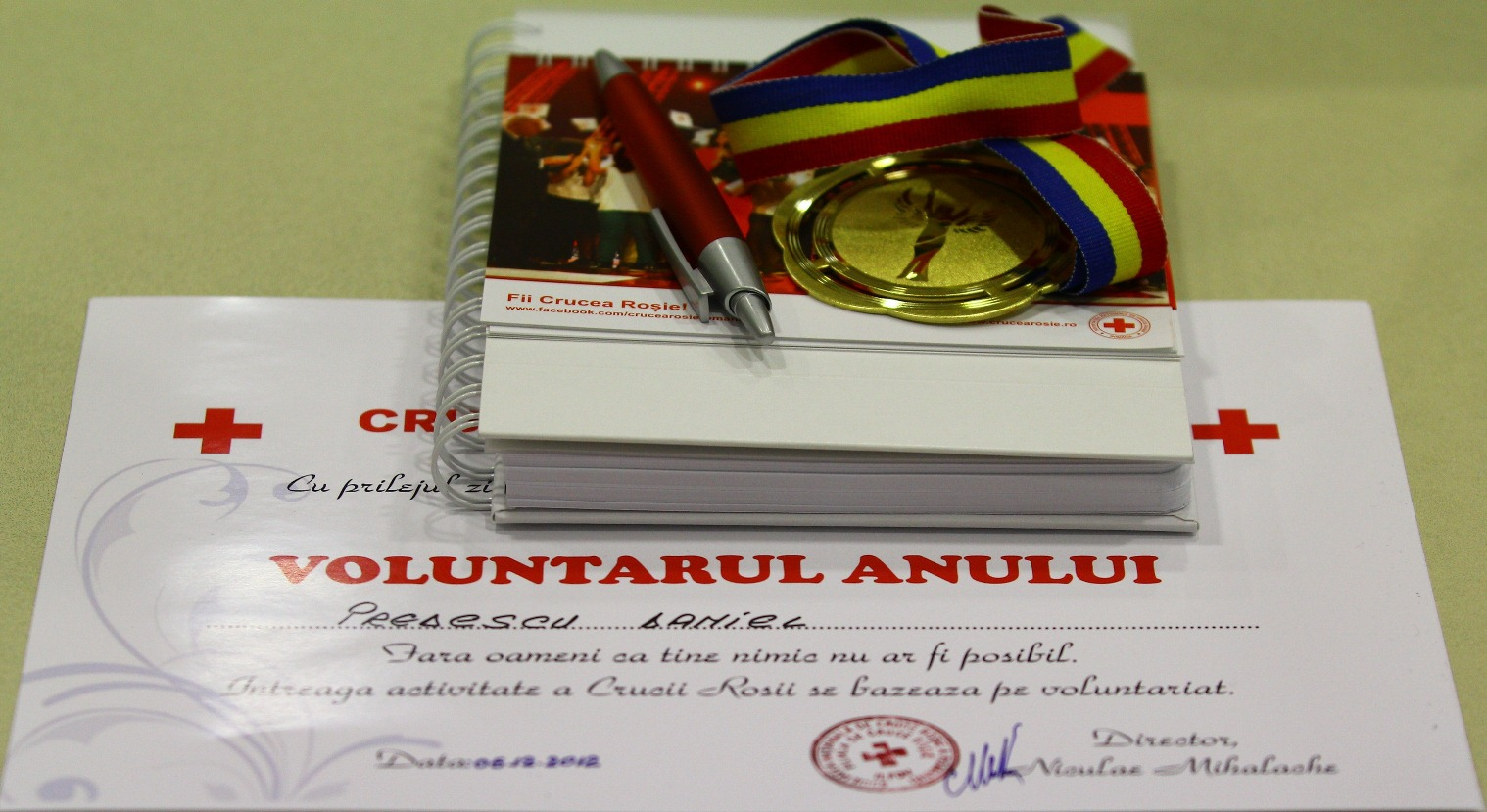Ziua Internationala a Voluntarilor 2012