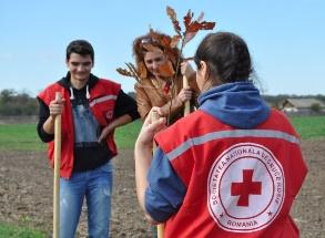 Crucea Rosie Romana Filiala Ilfov, Plantam Copaci
